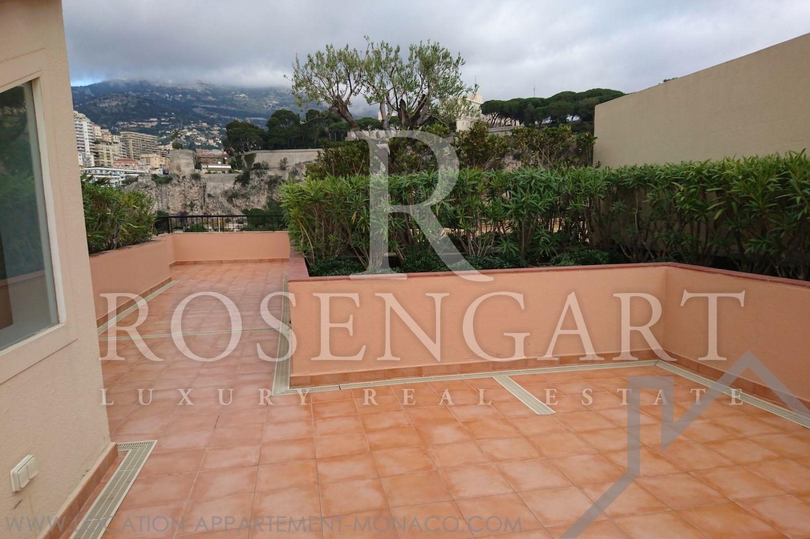 2 pi ces avec toit terrasse et vue port mantegna for Location appartement avec terrasse 92