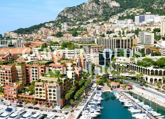 Large office spaces in Fontvieille