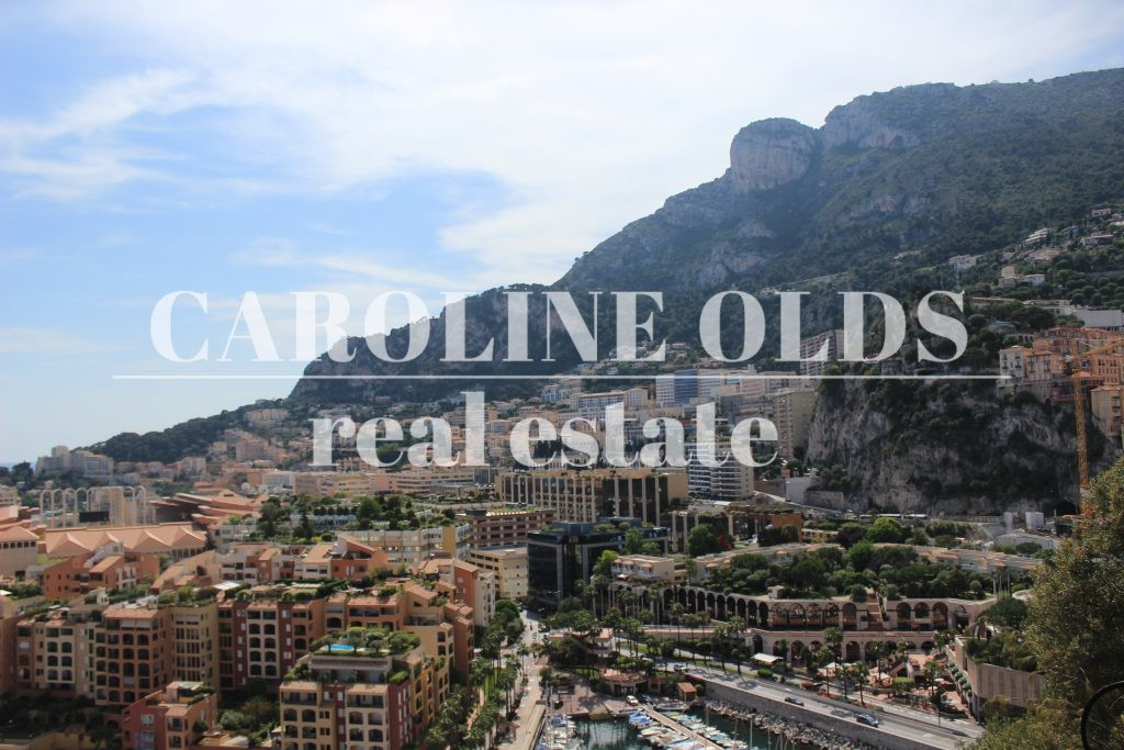 Large offices, Fontvieille +1000 sqm